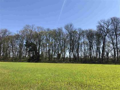 Lots And Land for sale in 0 COUNCE RD, Robinsonville, MS, 38664