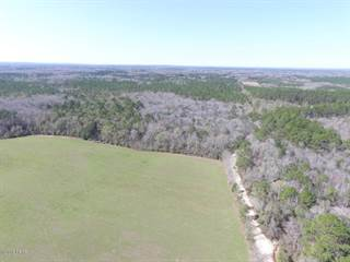 Land for sale in 00 Taylor Road, Cottondale, FL, 32431