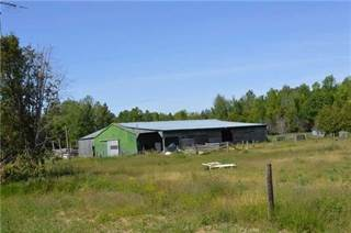 Farm And Agriculture for sale in 7818 Old Homestead Rd, Georgina, Ontario