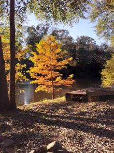 Lots And Land for sale in 34 Lake Montrose, Natchez, MS, 39120