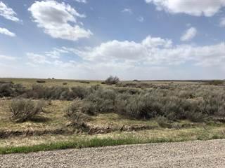 Land for sale in Lot 22b Cedar Lake Lane, Ashton, ID, 83420