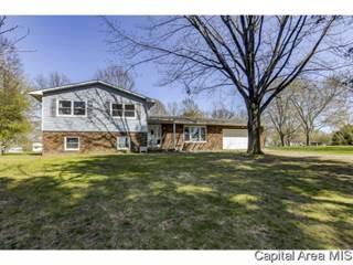 Single Family for sale in 676 GABRIEL RD, Greater Riverton, IL, 62712