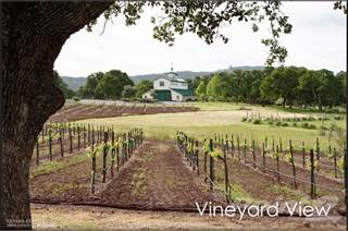 Farm And Agriculture for sale in 8600 BIG OAK VALLEY RANCH ROAD, 400A, Greater Marysville, CA, 95977