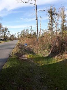 Lots And Land for sale in 000 Magnolia Blossom Lane, Marianna, FL, 32446