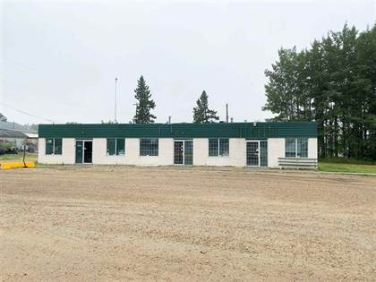 Retail Property for sale in 51 ST 5004, Warburg, Alberta, T0C2T0