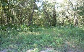 Lots And Land for sale in ELKCAM BOULEVARD, Chipley, FL, 32428