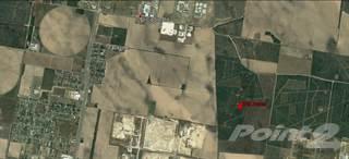 Other Real Estate for sale in 1 1/2 Mi. East El Cibolo Road, Edinburg, TX, 78542