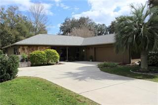 Single Family for sale in 1225 PALMETTO ROAD, Eustis, FL, 32726