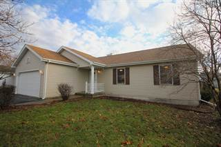 Single Family for sale in 275 West Hall Street, Leland, IL, 60531