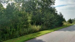 Land for sale in 116 Arrowood Lane 12, Harmony, NC, 28634