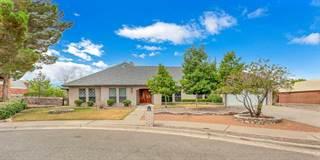 Single Family for sale in 1205 Cerrito Perdido Lane, El Paso, TX, 79912