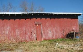 Residential Property for sale in 827 Highway 232, Irvington, KY, 40144