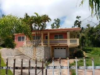 Single Family for sale in N/A CARR 569, Orocovis, PR, 00720