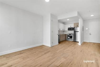 Residential Property for rent in 65 Woodbine Street 1-B, Brooklyn, NY, 11221