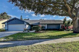 Single Family for sale in 2477 STAG RUN BOULEVARD, Clearwater, FL, 33765