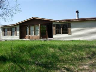 Single Family for sale in 17066 Airport Road, Wellston, MI, 49689