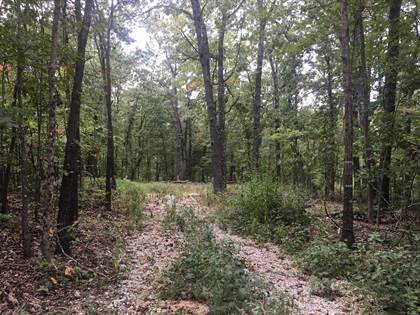 Lots And Land for sale in 0 Co Rd P-305, Ava, MO, 65755