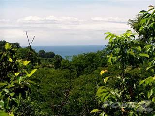 Residential Property for sale in Valle Pura Vida Property, Ocean View Lot For Sale, Manuel Antonio, Puntarenas