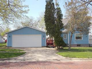 Single Family for sale in 514 North Pleasant Street, Princeton, IL, 61356