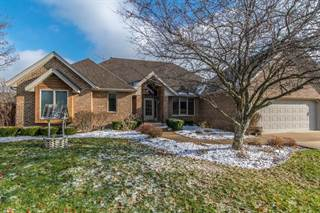 Single Family for sale in 1579 Little Willow Road, Morris, IL, 60450