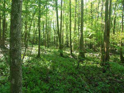 Farm And Agriculture for sale in 18927 Model Realty Road, Pacific, MO, 63069
