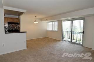 Apartment For Rent In Kings Park Plaza Homes Two Bedroom 1 Bath Hyattsville