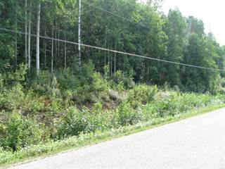 Land for sale in Mountain View Road, McBride, British Columbia, V0J 2E0