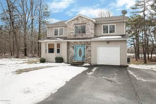 Single Family for sale in 3223 Willow Grove Rd, Pocono Summit, PA, 18346