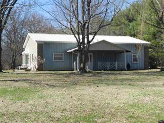 Single Family for sale in 3987 State Route 123, Bardwell, KY, 42023