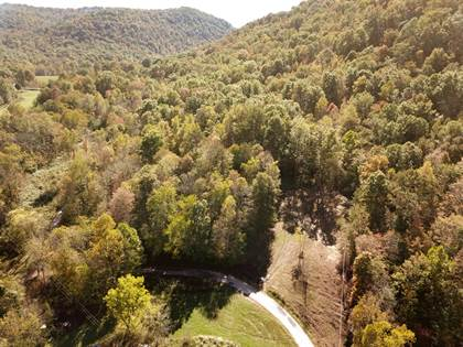 Farm And Agriculture for sale in 1 Long Branch Road, Berea, KY, 40403