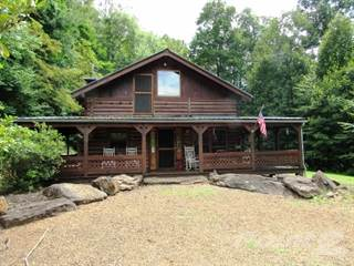 Residential Property for sale in 32 A & W Lane, Green Mountain, NC, 28740