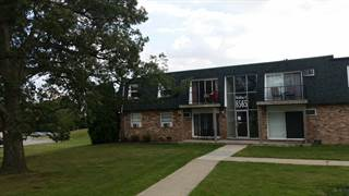 Condo for sale in 8565 West 101st Terrace 6316, Palos Hills, IL, 60465