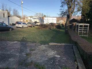 Land for sale in Main Street Highway, Huttonsville, WV, 26273
