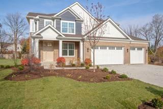Single Family for sale in 393 Camargo Court, Vernon Hills, IL, 60061