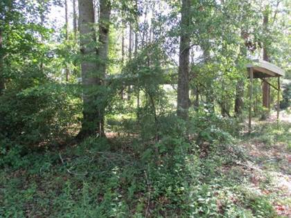 Lots And Land for sale in 140 Corsica Place, Georgetown, GA, 39854