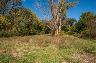 Land for sale in 11786 OSTRANDER Road, Greater Dundee, MI, 48159