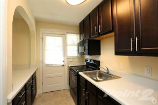 Apartment For Rent In Terraces At Bellevue   One Bedroom One Bath, Richmond,  VA
