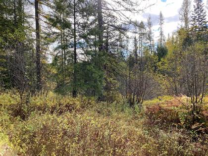 Lots And Land for sale in No Known Address Lots 48 & 49), Priest River, ID, 83856