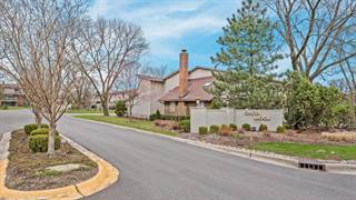 Townhouse for sale in 19W185 Theresa Lane, Oak Brook, IL, 60523