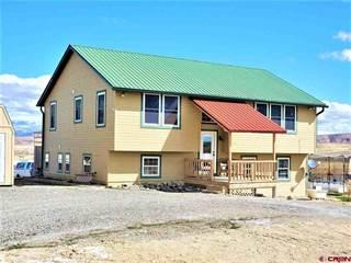 Single Family for sale in 21759 E Road, Delta, CO, 81416