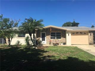Single Family for sale in 10827 MAPLEWOOD AVENUE, Bayonet Point, FL, 34668