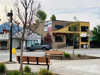 Comm/Ind for rent in 101-1313 7th Avenue, Invermere, British Columbia, V0A 1K0