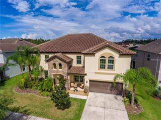 Single Family for sale in 19315 YELLOW CLOVER DRIVE, Tampa, FL, 33647