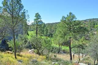 Land for sale in 521 Lodge Trail Circle 16, Prescott, AZ, 86303