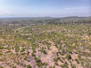 Land for Sale High Country, AZ - Vacant Lots for Sale in