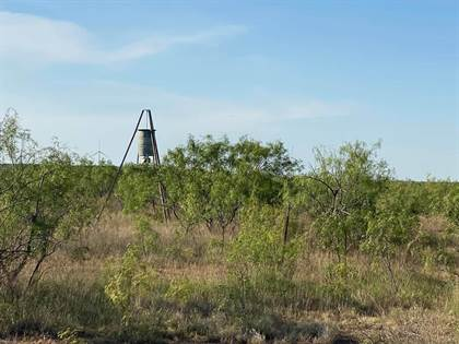 Lots And Land for sale in 13748 US Hwy 87, Sterling City, TX, 76951