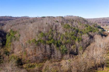 Farm And Agriculture for sale in 0 Pope Hollow, Grayson, KY, 41143