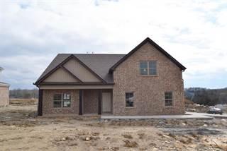 Single Family for sale in 5545 Stonefield Drive, Smyrna, TN, 37167