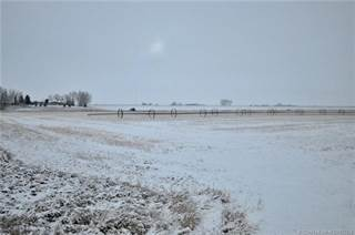 Farm And Agriculture for sale in 233045 A Highway 36, Vauxhall, Alberta, T0K 2K0