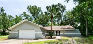 Single Family for sale in 1505 Don Jr. Avenue, Brooksville, FL, 34601